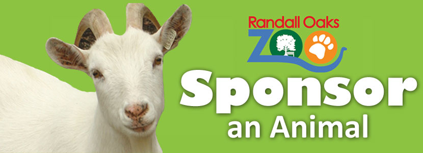 ROZ Animal Sponsorships