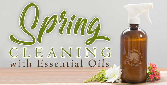 Spring_Cleaning_IB_March_2021