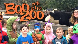 Boo_at_the_zoo_FP